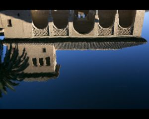 Generalife Reflection Web.jpg