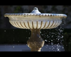 Alhambre Fountain Web-c88.jpg